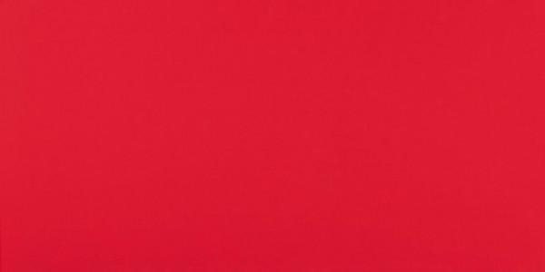 Wandfliese Rot matt 40x80cm