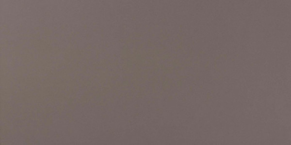 Wandfliese Grau matt 40x80cm