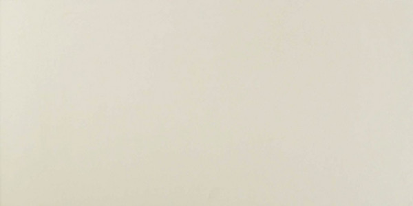 Wandfliese Hellgrau matt 40x80cm